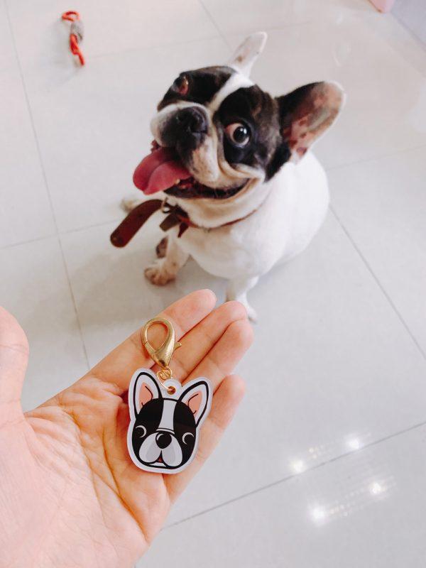 Placa identificativa para mascotas con nombre y dibujo personalizado + 1 in regalo 18