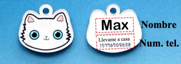 Placa identificativa para gato con nombre y dibujo personalizado + 1 de regalo 4