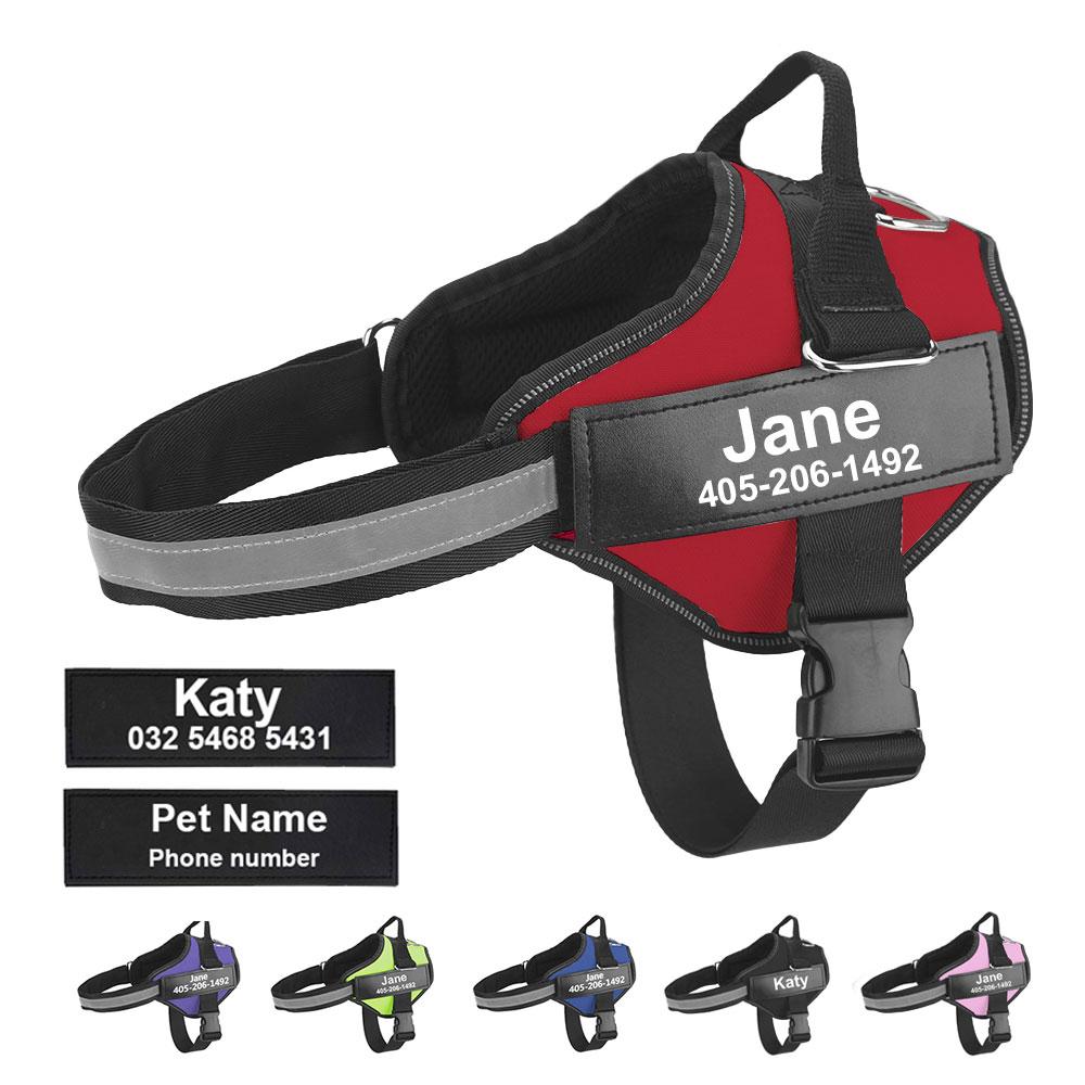 Arnés de perro anti tirones con nombre y teléfono, transpirable y reflectante 1