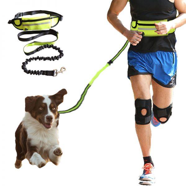 Correa y riñonera manos libres para correr con perro 2