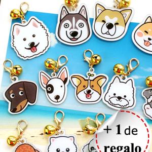 Placa identificativa para mascotas con nombre y dibujo personalizado + 1 in regalo