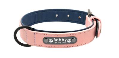 Collar personalizado con nombre + correa para perro 9