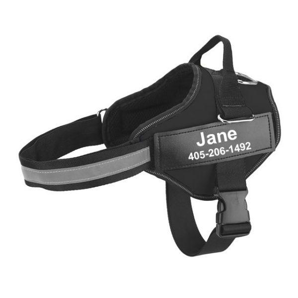 Arnés de perro anti tirones con nombre y teléfono, transpirable y reflectante 7