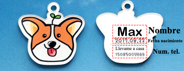 Placa identificativa para mascotas con nombre y dibujo personalizado + 1 in regalo 3