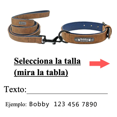 Collar personalizado con nombre + correa para perro 2