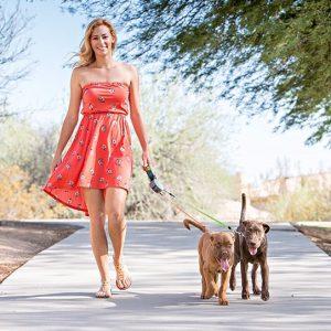 Correa doble retráctil para dos perros 16