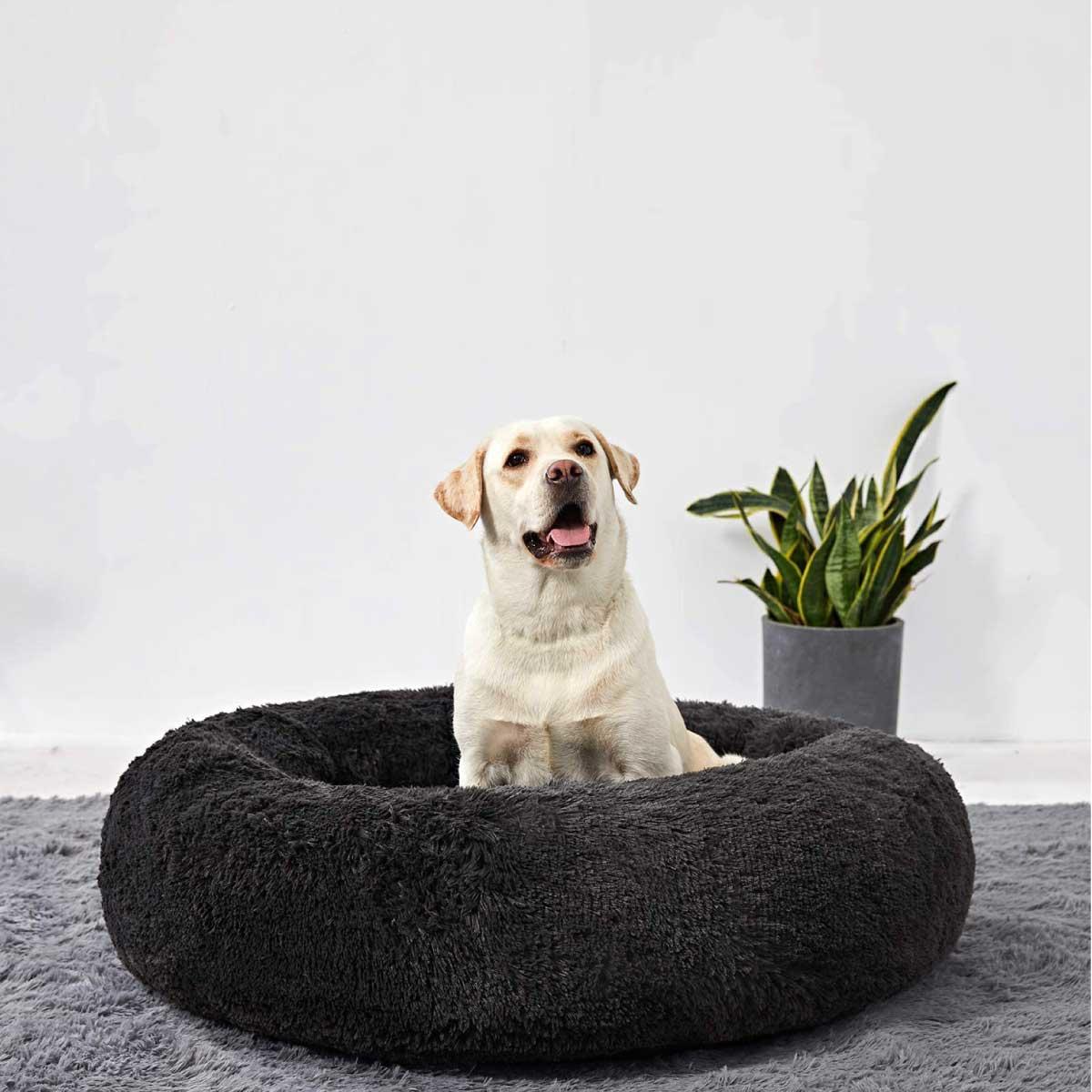 Cama calmante anti ansiedad antiestrés para perro grande