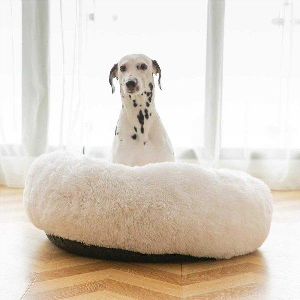 Cama calmante anti ansiedad antiestrés para perro mediano